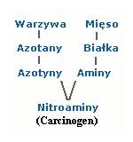 azotyny
